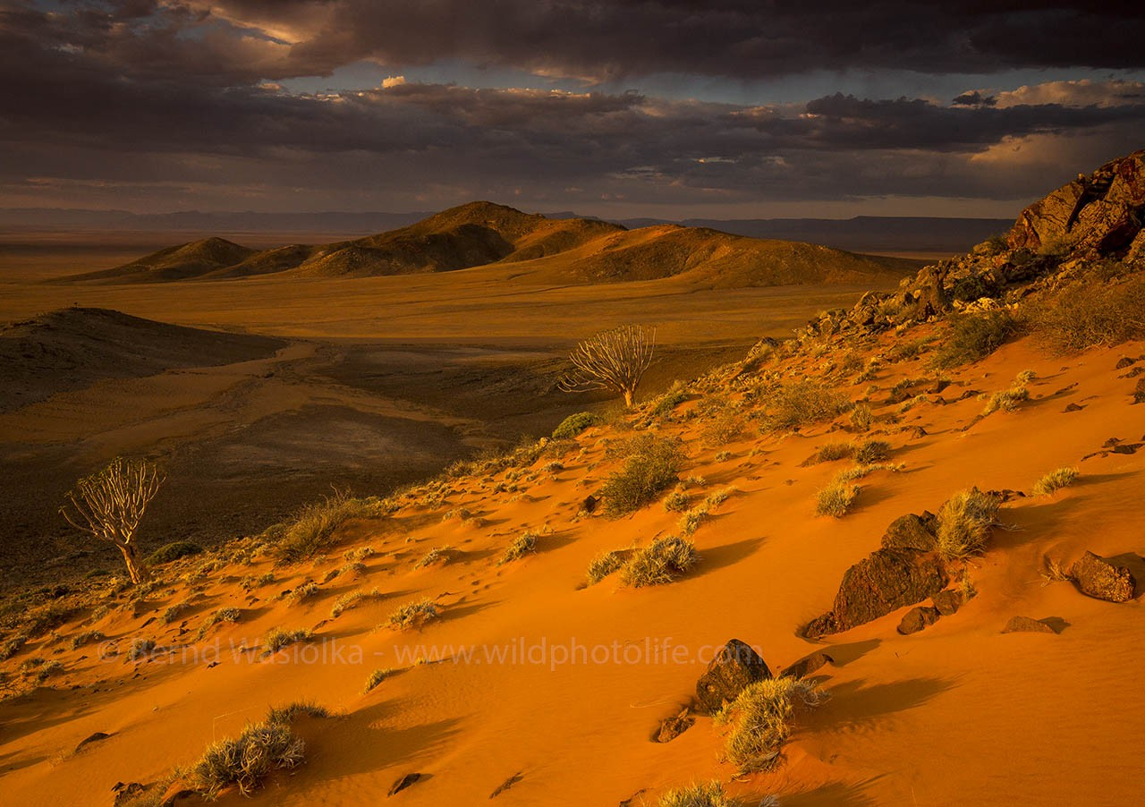 Rocks and sand in the Namib desert