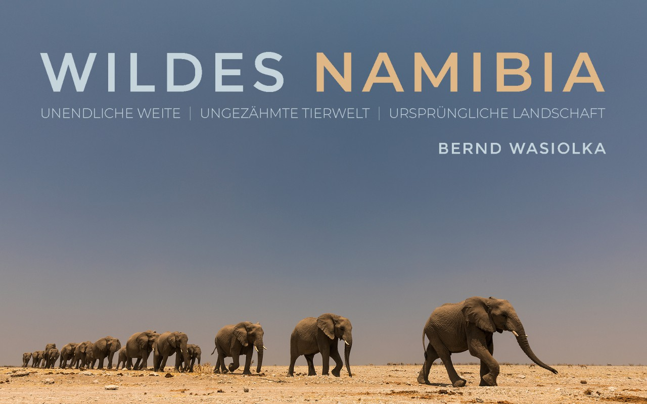 Multivisions Show WILDES NAMIBIA 2019