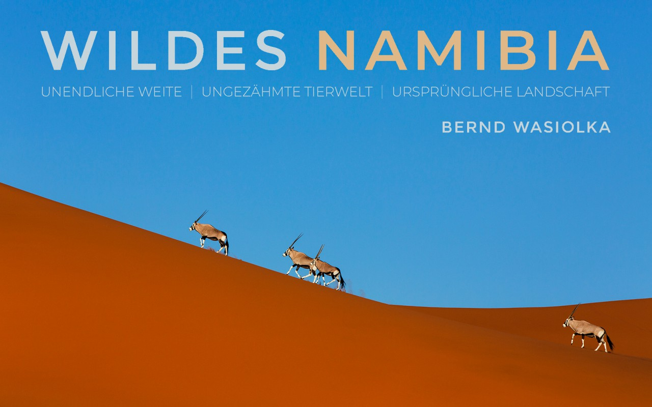Multivisions Show WILDES NAMIBIA 2020