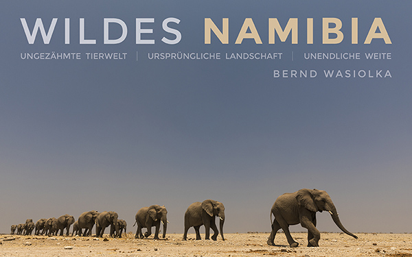 Cover WILDES NAMIBIA Bildband